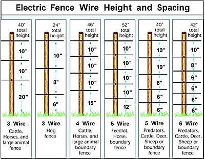 Hi-Tensile Fence Diagram
